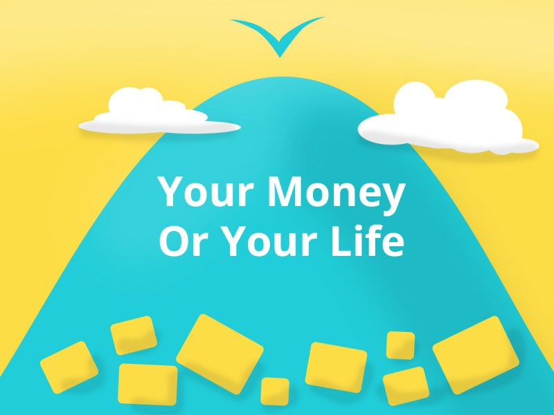 your money your life summary