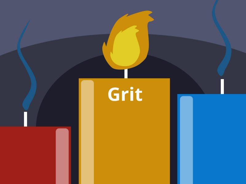 grit book summary